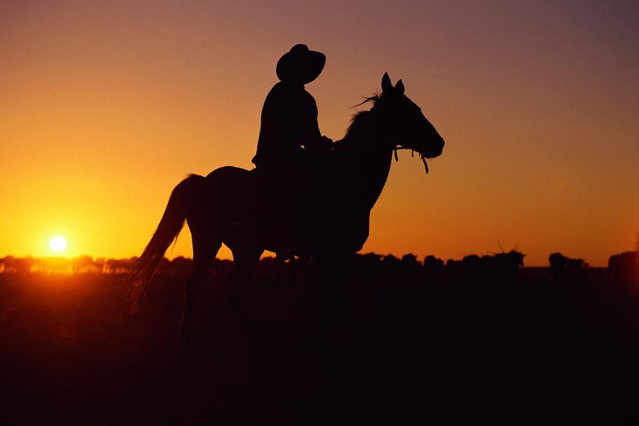 a-cowboy-and-his-horse-ride-medford-taylor